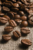 Coffee grains. On a rough sacking Royalty Free Stock Photography