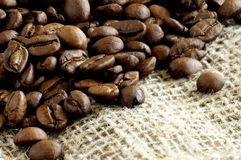 Coffee grains Royalty Free Stock Image