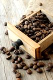 Coffee grains arabiga type of coffee Royalty Free Stock Photos