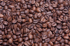 Coffee grains background royalty free stock images