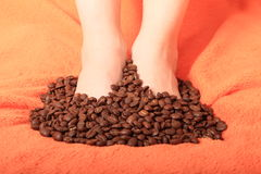 Coffee grains Stock Photos