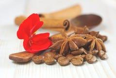 Coffee grains cinnamon sticks aroma drink background Stock Photos