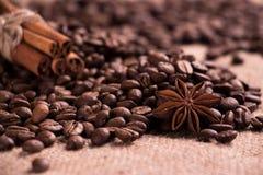 Coffee grains, cinnamon sticks, star anise. Stock Photos