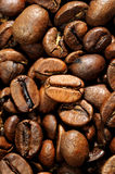 Coffee grains close up Royalty Free Stock Photography