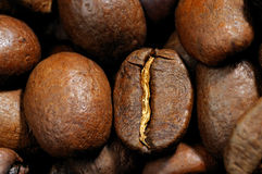 Coffee grains close up Royalty Free Stock Images
