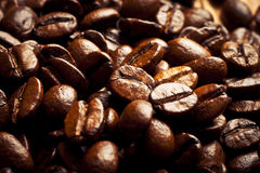 Coffee grains close up Stock Image