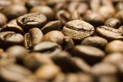 Coffee in grains close up Royalty Free Stock Images