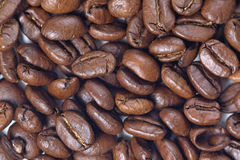 Coffee grains - close up Royalty Free Stock Images