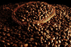 Coffee grains expo Royalty Free Stock Photos