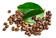 Coffee grains and leaves Stock Image