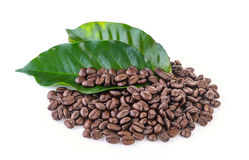 Coffee grains and leaves Stock Photo