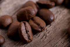 The  coffee in grains or mocha Stock Images