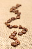 Coffee grains on old fabric Stock Photos
