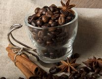 Coffee grains and spices Royalty Free Stock Photography