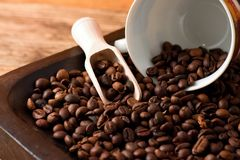 Coffee grains on tray from dark wood and spilled cup Royalty Free Stock Image