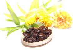 Coffee grains on wooden spoon, flowers and bamboo Stock Photo