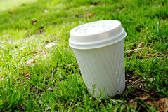 Coffee in grass Stock Image
