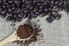 Coffee grind in wooden spoon on sackcloth with coffee beans background. Copy space. Coffee grind in wooden spoon on sackcloth with coffee beans background. Copy Stock Images