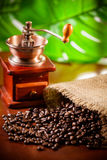 Coffee grinder. And coffee beans royalty free stock images