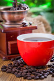 Coffee grinder. And coffee beans royalty free stock photos