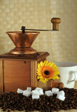 Coffee Grinder, Beans, Sugar Royalty Free Stock Image