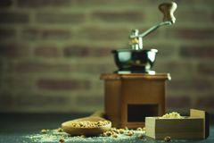 Coffee grinder grinding soybeans into powder. Coffee grinder grinding soybeans into powder and wooden ladle in darkness. Used to make soy milk stock image