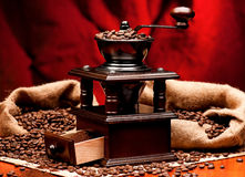 Coffee grinder Stock Image