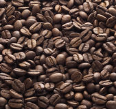 Coffee grounds Stock Image