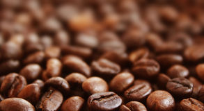 Coffee grunge background (closeup) Stock Image