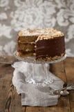 Coffee and hazelnut cake Royalty Free Stock Image