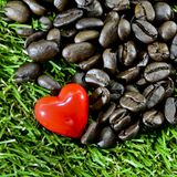 Coffee heart. Closeup red heart and coffee beans on green grass background Royalty Free Stock Photos