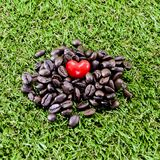 Coffee heart. Closeup red heart on coffee beans on green grass background Royalty Free Stock Image