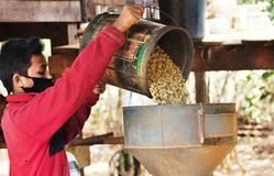Coffee hulling machine Stock Photos