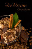 Coffee ice cream with chocolate and cinnamon. Coffee ice cream with chocolate, coffee beans , mint and cinnamon sticks Royalty Free Stock Image