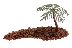 Coffee island. With green palm tree Royalty Free Stock Photo
