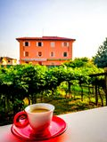 Coffee in Italy vertical. Cup of coffee in white cup on red saucer in Verona neighborhood with grapevines and Italian house royalty free stock images