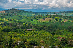 Coffee Landscape. A view of the landscape in Colombia's coffee producing region Royalty Free Stock Images