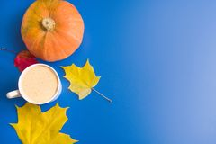 Coffee, leaves and pumpkin Stock Image