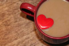 Coffee Lover Stock Image