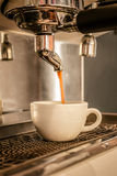 Coffee machine making espresso in a cafe. Stock Photos