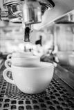 Coffee machine making espresso in a cafe. Royalty Free Stock Images
