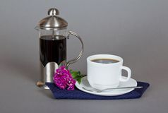 Coffee maker, cup of coffee, bright carnation Stock Photo