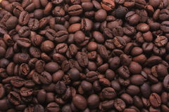Coffee Mania stock photo