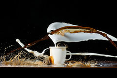 Coffee and milk pouring in a cup Stock Image