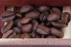 Coffee mill case with coffee beans. Macro photo from a coffee mill case with coffee beans Royalty Free Stock Image