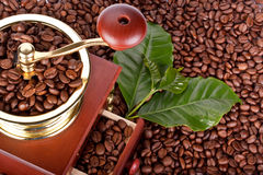 Coffee mill and coffee beans Royalty Free Stock Photography