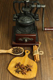 Coffee mill and some spices. Vintage coffee hand mill and different spices on the tiny cutting board and wooden spoon stock photos