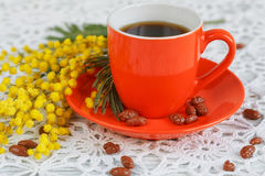 Coffee and mimosa Stock Photos
