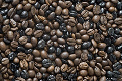 Coffee mixture texture. Stock Photography