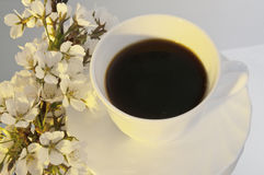 Coffee at morning sunlight Stock Photography